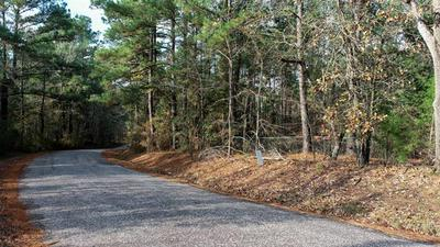 TBD ANDERSON COUNTY RD 346 ROAD, Palestine, TX 75802 - Photo 1
