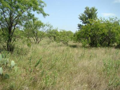 25 TRK3 CO ROAD 104, Cisco, TX 76437 - Photo 2