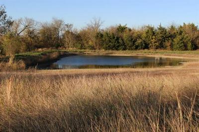 TBD W HWY 82, Honey Grove, TX 75446 - Photo 2
