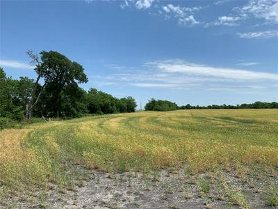 TRACT 1 COUNTY RD 2730, Farmersville, TX 75442 - Photo 1
