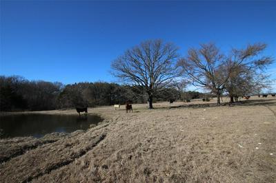 51 AC RS COUNTY ROAD 2420, Alba, TX 75410 - Photo 2