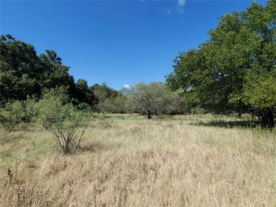 TBD COUNTY RD 445, De Leon, TX 76444 - Photo 1