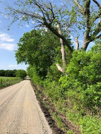 TBD COUNTY RD 1052, Celeste, TX 75423 - Photo 2