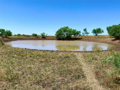 HWY 206 HWY 206 & CR 160, Burkett, TX 76828 - Photo 1