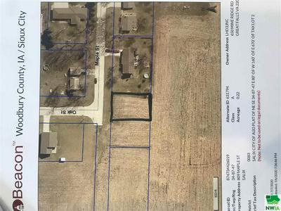 TBD MAPLE ST., Salix, IA 51052 - Photo 1