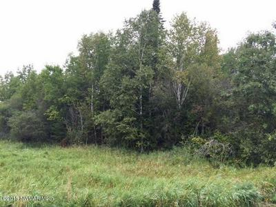 7.52A HWY 71 HIGHWAY, Blackduck, MN 56647 - Photo 1