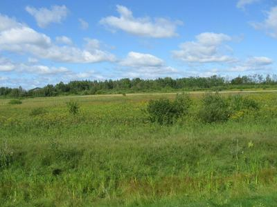 COUNTY RD NW 42ND AVE. AVENUE NW, BAUDETTE, MN 56623 - Photo 2