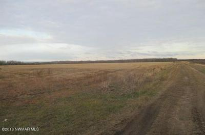 COUNTY ROAD 2 ROAD, Williams, MN 56686 - Photo 2