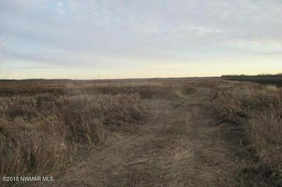 COUNTY ROAD 2 ROAD, Williams, MN 56686 - Photo 1