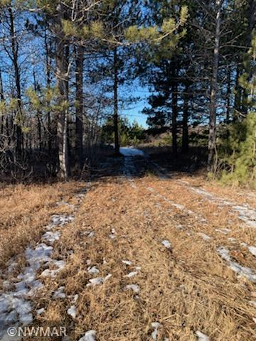 TBD STATE HIGHWAY 172 NW, BAUDETTE, MN 56623 - Photo 1