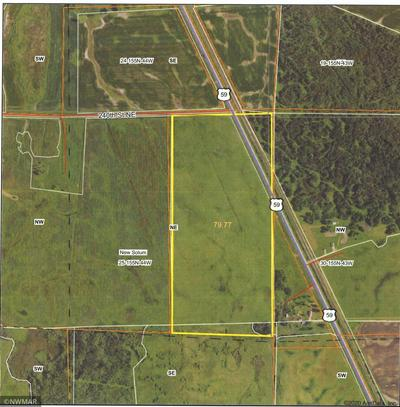 TBD JCT OF 240TH & HWY #59 HIGHWAY, THIEF RIVER FALLS, MN 56701 - Photo 1
