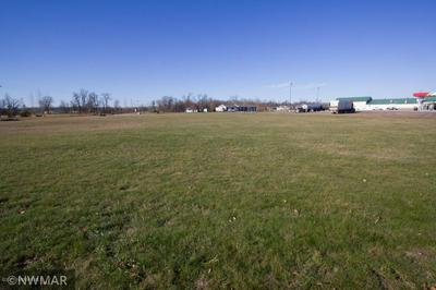TBD US HWY 59 HIGHWAY SE, THIEF RIVER FALLS, MN 56701 - Photo 2