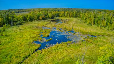 TBD GREAT DIVIDE RD NW, PUPOSKY, MN 56667 - Photo 2