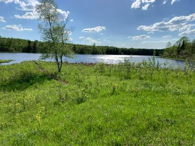 25987 HAY CREEK RD NE, Tenstrike, MN 56683 - Photo 2