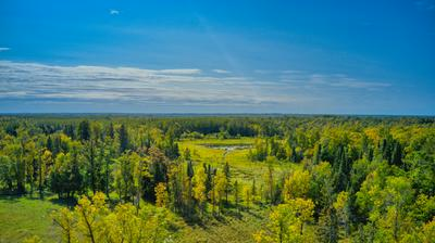 TBD GREAT DIVIDE RD NW, PUPOSKY, MN 56667 - Photo 1
