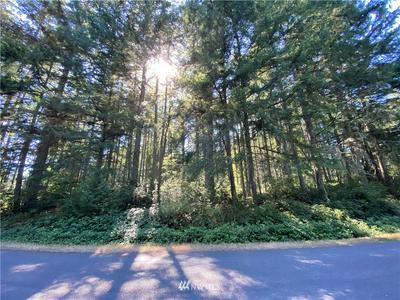 10916 COUNTRY CLUB DR, Anderson Island, WA 98303 - Photo 2
