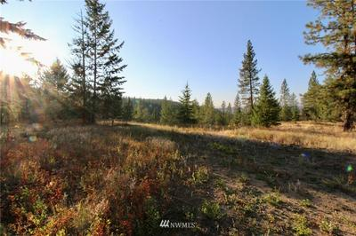0 RAIL CANYON LOT #3 ROAD, Ford, WA 99013 - Photo 1