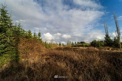 6 ALSPACH RD, Onalaska, WA 98570 - Photo 2