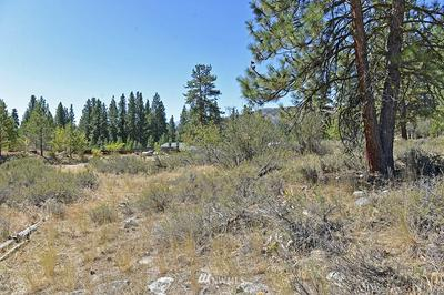 25 LOT PINE LOOP, Winthrop, WA 98862 - Photo 1