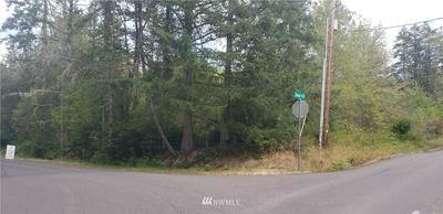 0 158TH SW AVENUE, Lakebay, WA 98349 - Photo 1