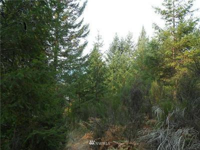 0 ALPINE DRIVE, Packwood, WA 98361 - Photo 1