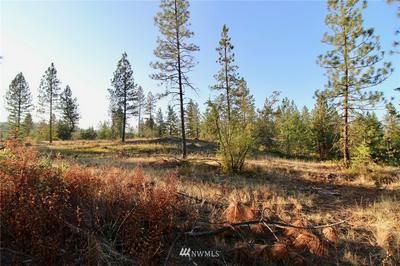 0 RAIL CANYON RD LOT 5, Ford, WA 99013 - Photo 2