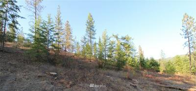 0 RAIL CANYON RD LOT 6, Ford, WA 99013 - Photo 2