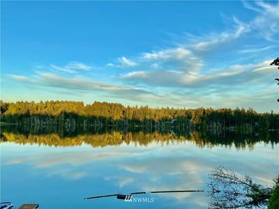 1420 SANFORD AVE SW, Lakebay, WA 98349 - Photo 2