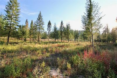 0 RAIL CANYON RD LOT 5, Ford, WA 99013 - Photo 1