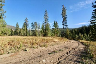 0 RAIL CANYON RD LOT 9, Ford, WA 99013 - Photo 1