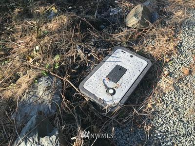 1680 ALGER CAIN LAKE RD, Sedro Woolley, WA 98284 - Photo 2