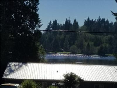 2281 W STAR LAKE DR, Elma, WA 98541 - Photo 2