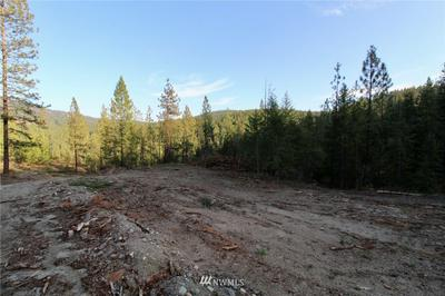 0 RAIL CANYON RD LOT 8, Ford, WA 99013 - Photo 1
