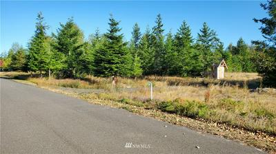 134 COLUMBINE WAY, Port Angeles, WA 98362 - Photo 2