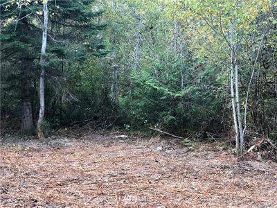 17323 RUSSIAN HILL LN SE, Rainier, WA 98576 - Photo 1