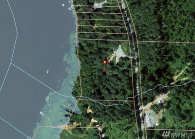 SKI PARK RD E, Eatonville, WA 98328 - Photo 1