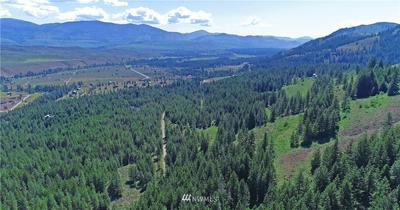 35 FS 5005 ROAD, Winthrop, WA 98862 - Photo 2