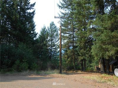 0 ALPINE DRIVE, Packwood, WA 98361 - Photo 2