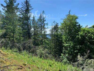 810 PIONEER HILL RD, Orcas Island, WA 98279 - Photo 1