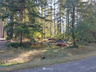 11015 MADRONA DR, Anderson Island, WA 98303 - Photo 2