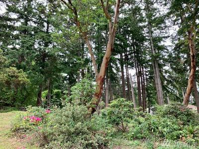 XXX RAIN DROP LANE, Freeland, WA 98249 - Photo 1