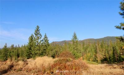 0 RAIL CANYON RD LOT 6, Ford, WA 99013 - Photo 1
