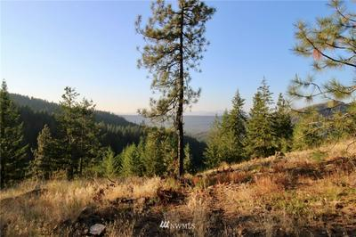 0 RAIL CANYON LOT #3 ROAD, Ford, WA 99013 - Photo 2