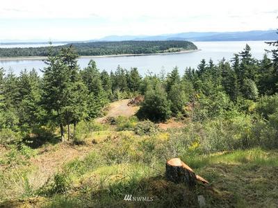 3060 MT VISTA DR, Lummi Island, WA 98262 - Photo 2