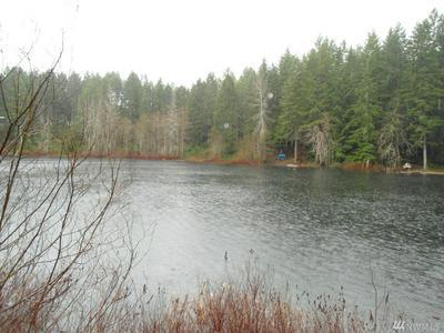 831 NE COLLINS LAKE DR, Belfair, WA 98588 - Photo 2