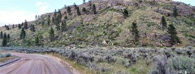 123 DRY COULEE RD, Okanogan, WA 98840 - Photo 1