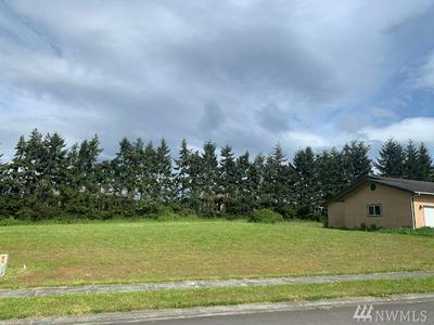 1130 ELK LOOP, Sequim, WA 98382 - Photo 1