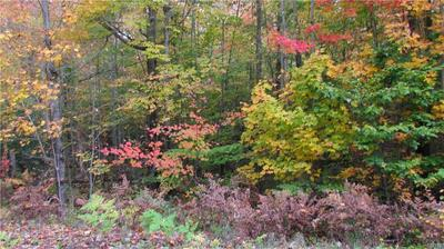 000 YOUNGS MILL ROAD, Croghan, NY 13327 - Photo 1