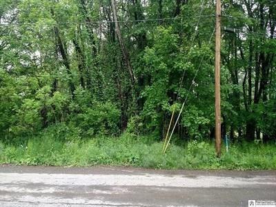 0 UNION STREET, Westfield, NY 14787 - Photo 1