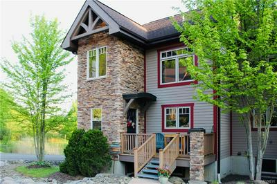 1 MOUNTAINVIEW LOWER, Ellicottville, NY 14731 - Photo 1